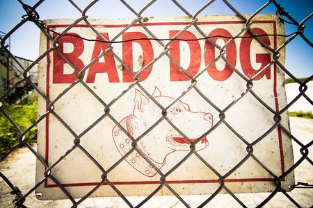 beware of the dog: Beware of the Dog Sign inside a fenced urban area