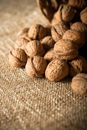 Series of organic and fresh walnuts