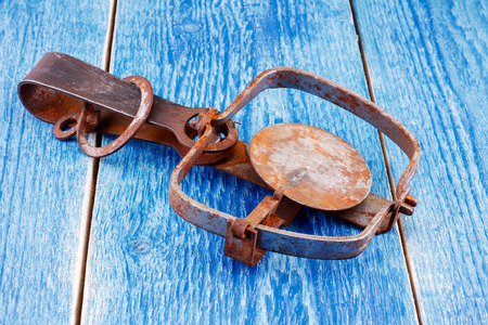 trap: Trap on a wooden background Stock Photo