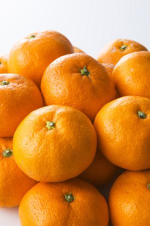 citrus family: Mandarin orange Stock Photo