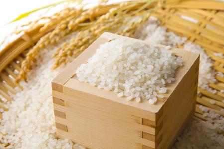 crop margin: Arroz japon�s