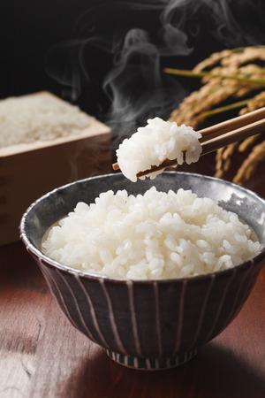 日本の米 写真素材