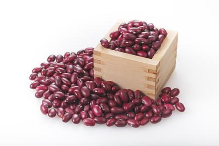 赤い腎臓豆 写真素材
