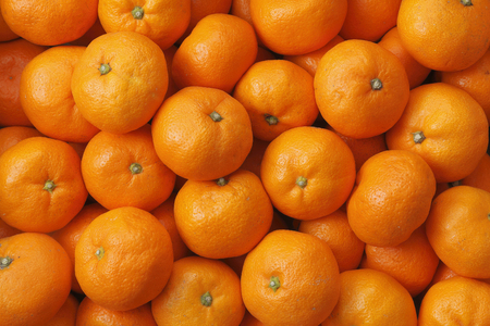 citrus family: Japanese Mandarin orange