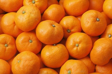 citrus family: Japanese Mandarin orange