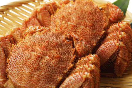Hair crab Stock Photo