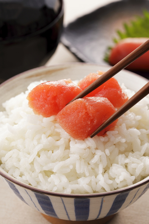 Salted Cod Roe.Japanese food mentaiko 스톡 콘텐츠