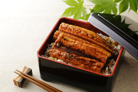 Unagi Grilled Eel over Rice with Japanese Sauce