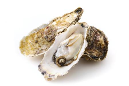 Huîtres en blanc Banque d'images