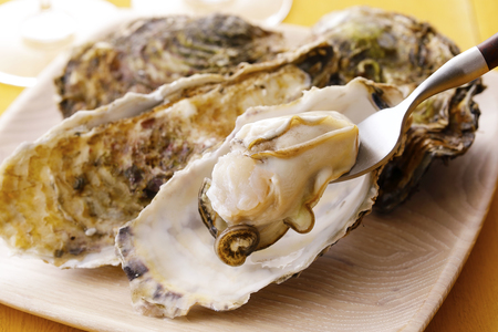 Oysters in plate