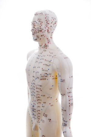 acupuntura china: Acupuntura aprendizaje debe estar en una pr�ctica tan acupuntura en el modelo