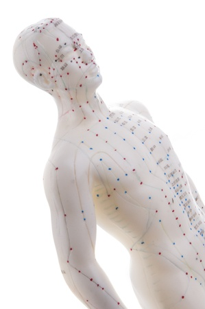 manikin: Learning acupuncture must be in such a acupuncture practice on the model Stock Photo