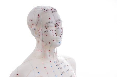 mannequin head: Learning acupuncture must be in such a acupuncture practice on the model Stock Photo
