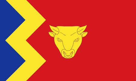 The historic flag of Birmingham