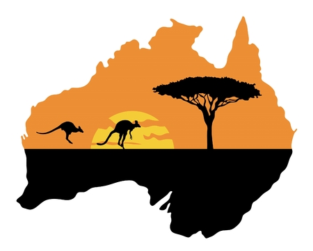 Kangaroos on the background of the setting sun
