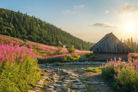 タトラ山脈を風景します。