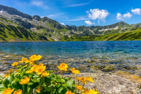 山の風景、山中湖 写真素材
