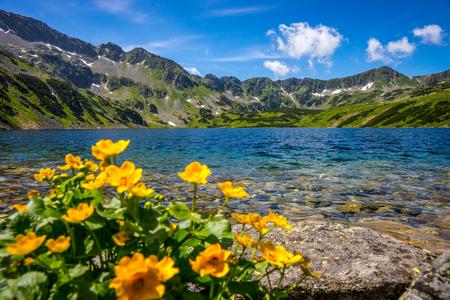 タトラ山脈の風景、ヨーロッパ、ポーランド