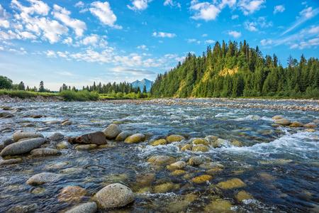 Mountain river, Tatra landscape