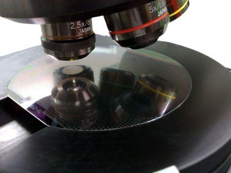 Silicon wafer under a microscope