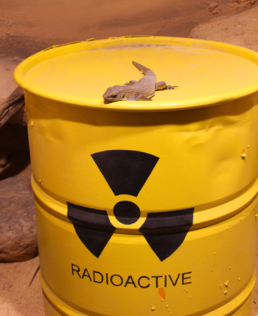 Lizard on a barrel of radioactive waste photo