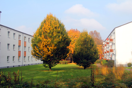 Autumn trees between the houses Stock Photo