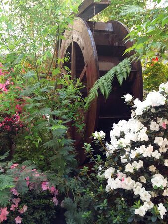 Wooden wheel of a water mill among flowers.
