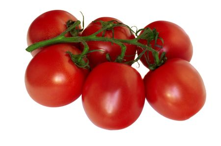 Six fresh tomatoes on a green branch