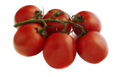 Six fresh tomatoes on a branch