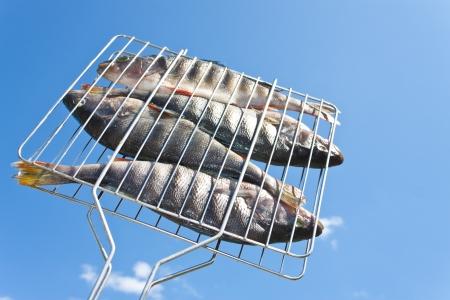 quatre perchoirs dans le réseau pour la friture