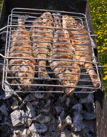 fish, roasted on the coals in the lattice for frying
