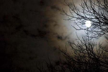 Moonlit night. Фото со стока - 2338503