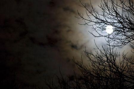 loup garou: Nuit travaill�e au noir. Banque d'images
