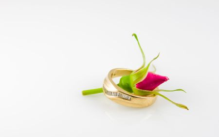 Budding Rose inside  ring. Budding Unity Stock Photo