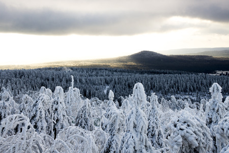 aerea: snow covered trees, sun and clouds in the mountain aerea Erzgebirge, Germany Stock Photo