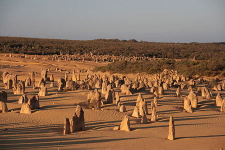 western australia: Pinnacles - famous rock formation Western Australia