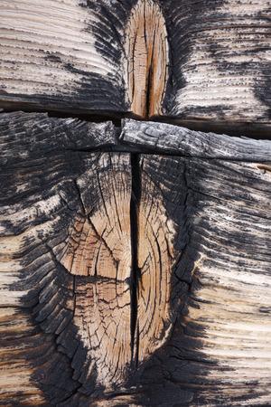 wood structure - knothole - background