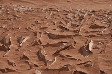 hardened: hardened soil