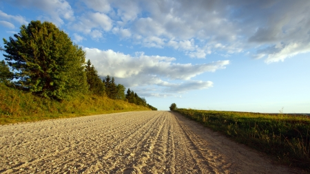 dirt road: August landscape with a road