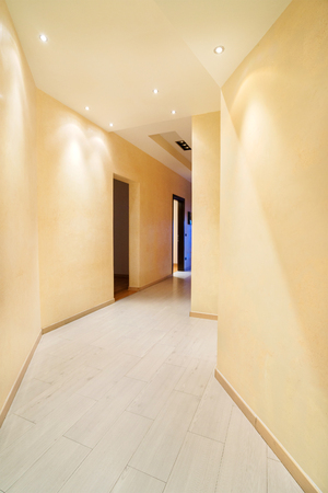 penthouse: Empty hall of the new penthouse
