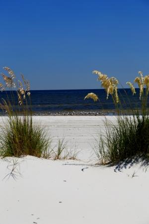 Pad naar de Golf