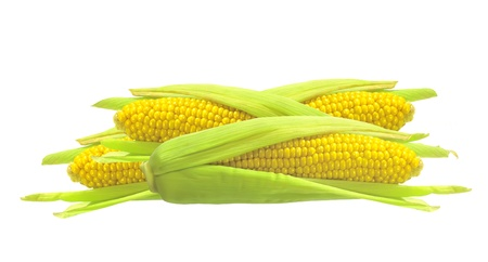 Sweet golden corn isolated on white background Imagens