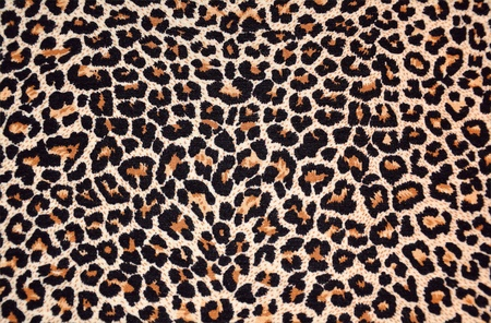 tessitura astratta di leopardo pelliccia (pelle)