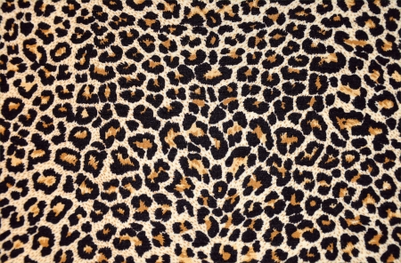 abstract texture of leopard fur (skin) photo