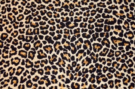 animal print: textura abstracta de pieles de leopardo (piel)