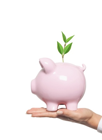 investor: piggy bank in woman hand - protect your money. Financial concept