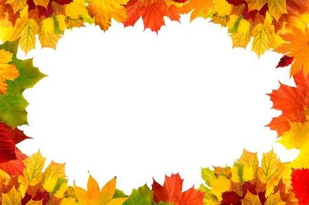 Colorful autumn maple leaves card for your text  Stock Photo - 10682478
