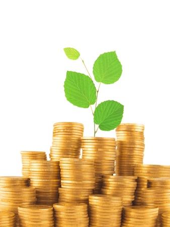 Pièces de monnaie et de plantes vertes isolées sur fond blanc Banque d'images
