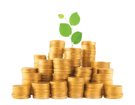 golden coins in column with green plant isolated on white photo