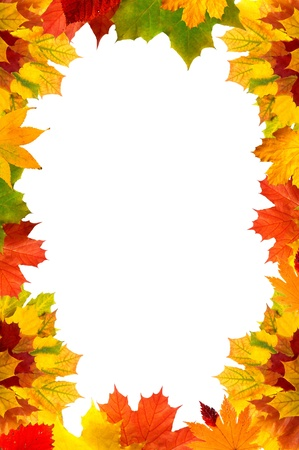 Colorful autumn maple leaves card for your text  photo